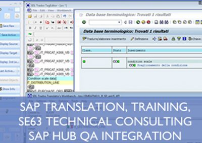 SAP Language Consultancy, QA, Training and Translation